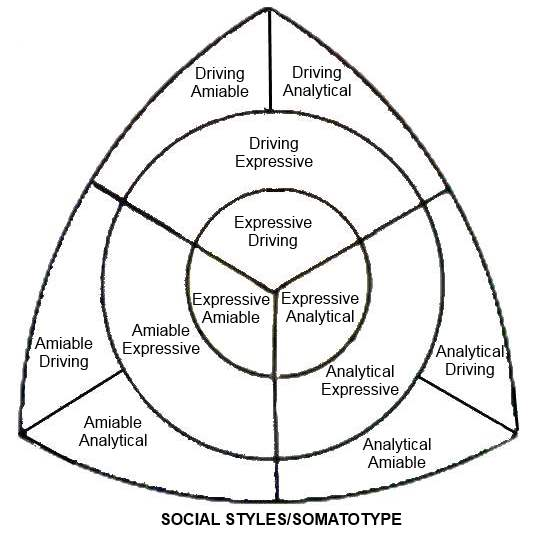 Four quadrant models somatotype body type personality type social styles mapped to somatotype ccuart Images
